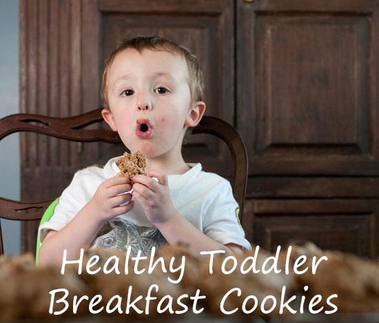healthy-toddler-breakfast-cookies
