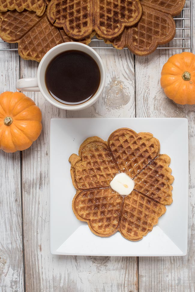 spelt pumpkin waffles - pumpkins waffles using spelt flour as a healthier whole wheat flour substitute