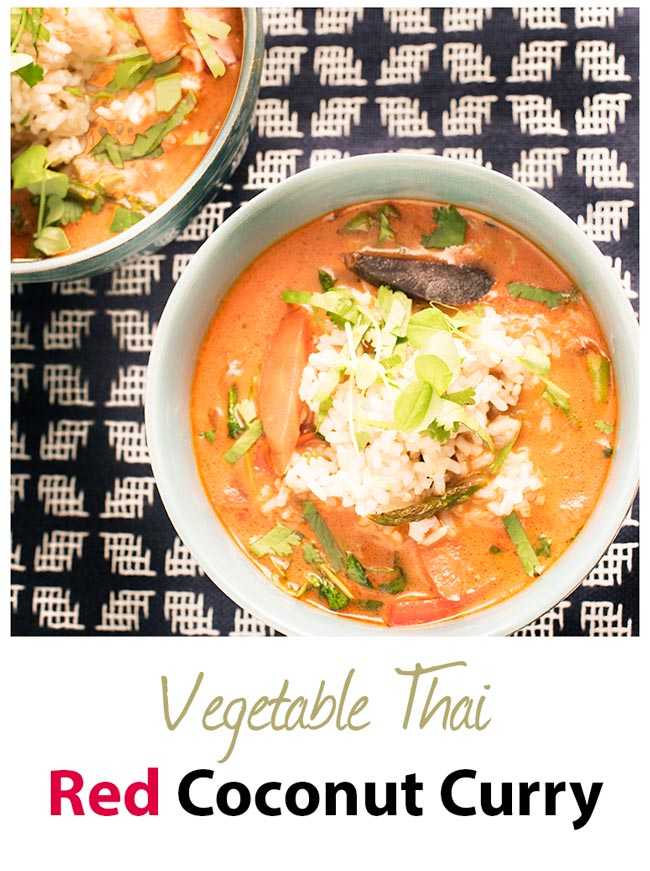 delicious vegetable thai red coconut curry